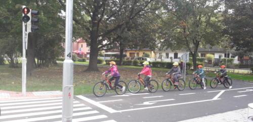 Na-semaforu-zastav-cyklisto