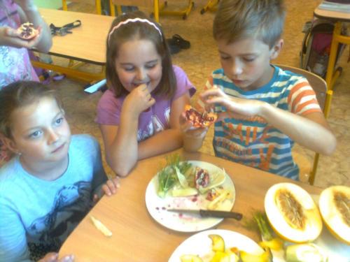Ochutnávkové koše projektu Ovoce do škol