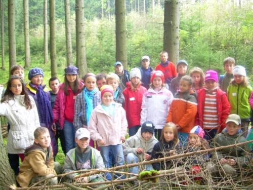 stromy1